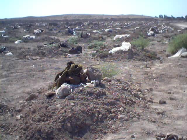 Mass Grave in Iraq