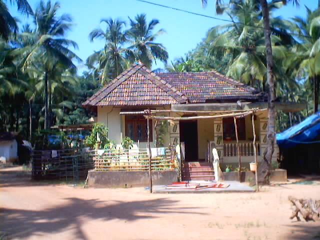 Roofs Toilets Shower Fishermen Pig Goa India