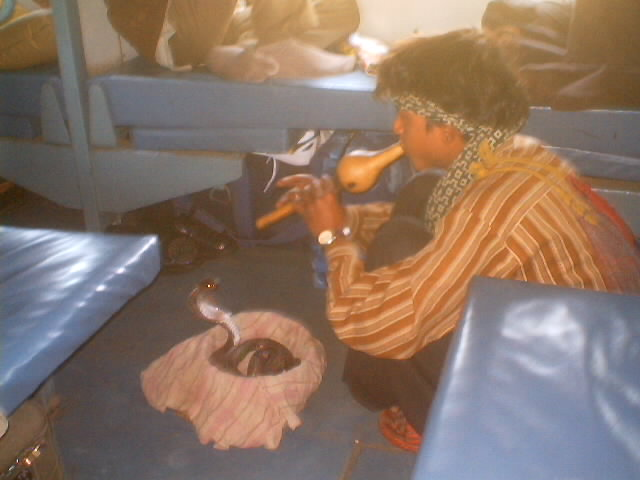 Tent People Of India Train Stop Cobra Snake Charmer