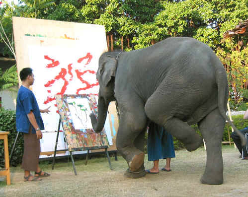 This elephant is concentrating while he paints. Chiang Mai, Thailand.