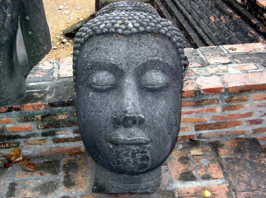 Buddha head in Thailand severed from the body by Burmese soldiers at Ayutthaya, Thailand