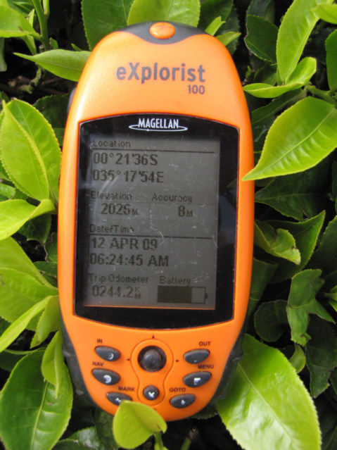 GPS being used in Tea Plantation in Kenya