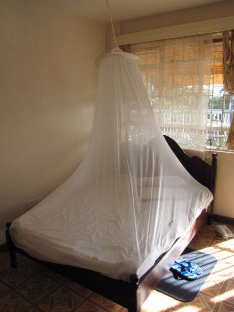 How To Hang Mosquito Net In Hotel Room