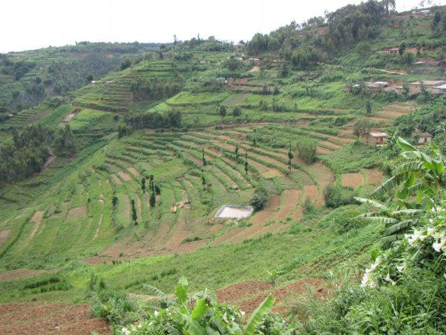 2009 may 23 enter rwanda leave uganda for Terrace farming