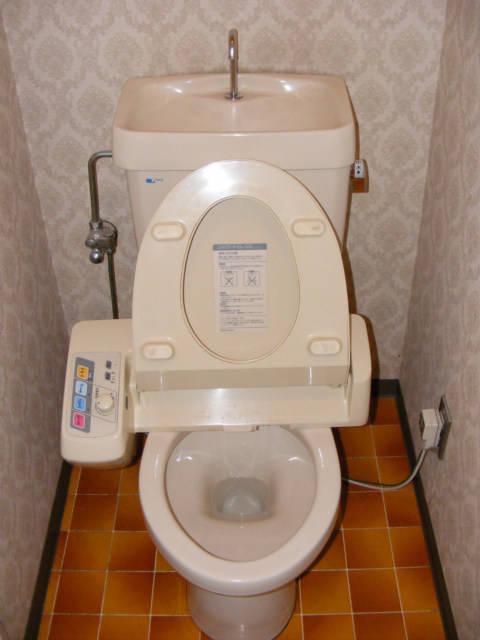 the toilet how developed is japan. Black Bedroom Furniture Sets. Home Design Ideas