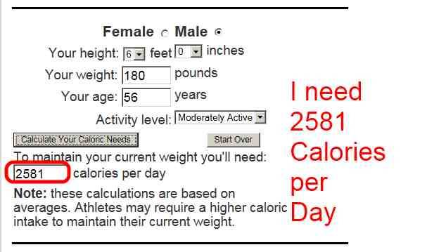 How many calories do you need a day?