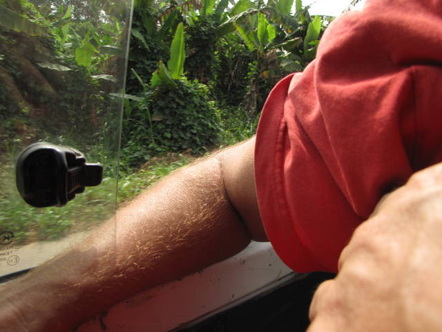 It Is Dangerous to Have Your Arm Out the Window of Taxi or Van