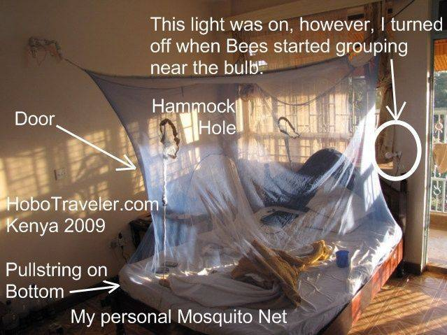 Mosquito net, the one item that is need 1-5 times per year, and well worth it.