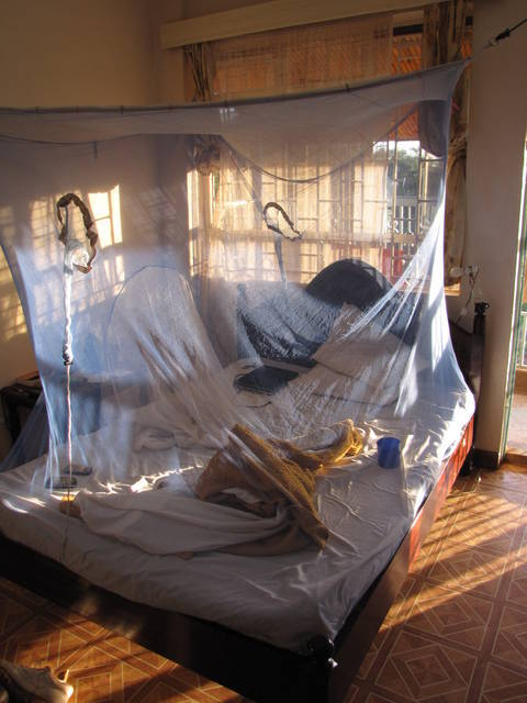 Mosquito net a must for travelers