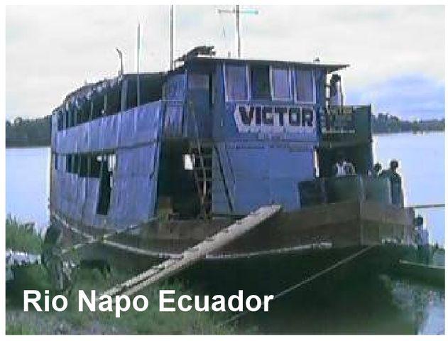 Monkey on Back - Boat Trip Rio Napo