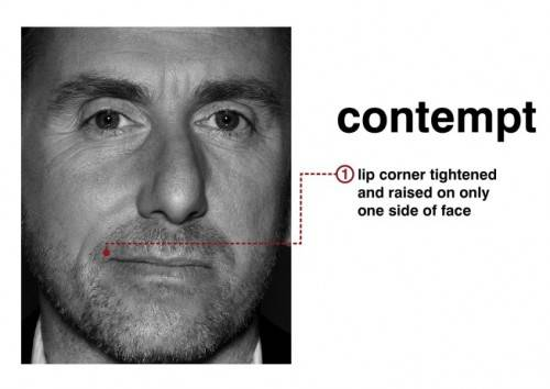 "Contempt face on actor lie to me ""Tim Roth."""
