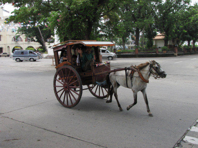Domestication of the horse help to drive a carriage.