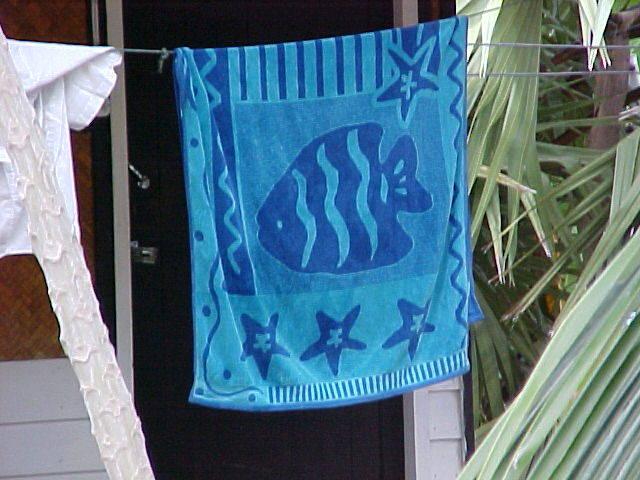Towel as Curtain