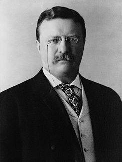 Theodore Roosevelt title=