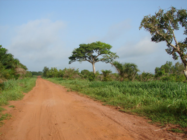 West Africa Geography