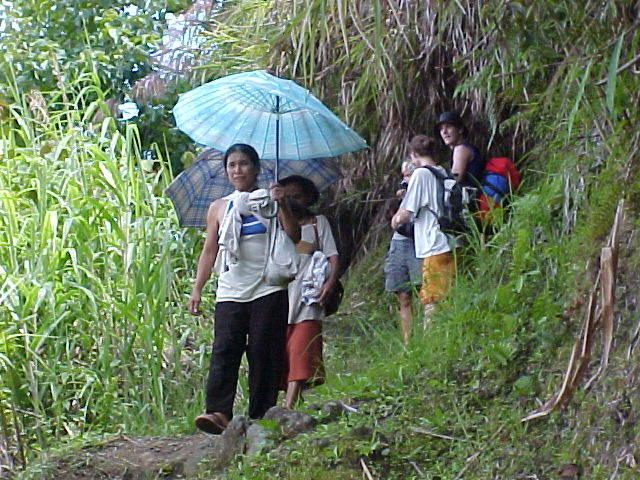 Umbrella for Locals